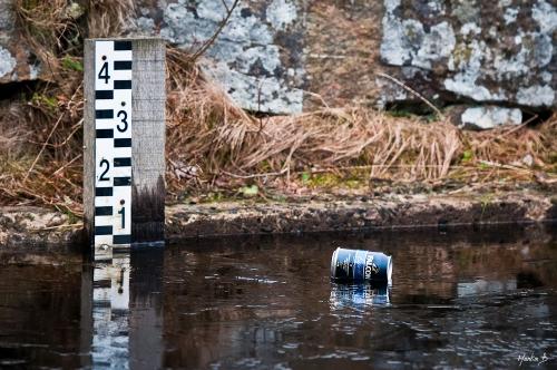 Stora Mölnesjön Rannebergen Martin Bergström Lavendelfoto