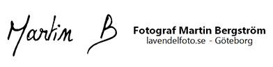 Lavendelfoto – Fotograf Martin Bergström – Göteborg